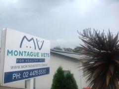 Montague Vets