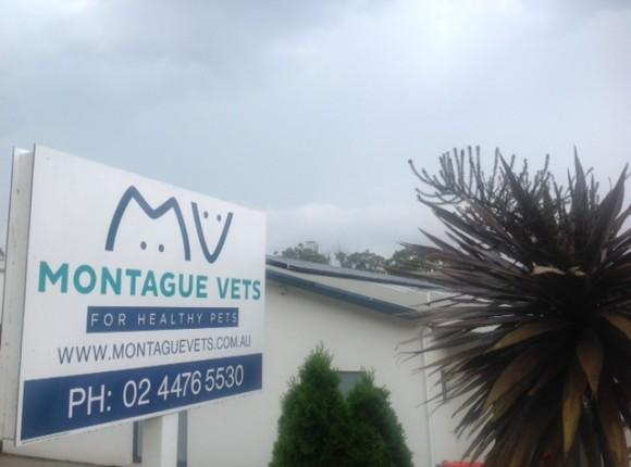 Montague Vets – 7kW